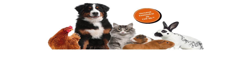 Pets Banner0
