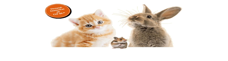 Pets Banner1