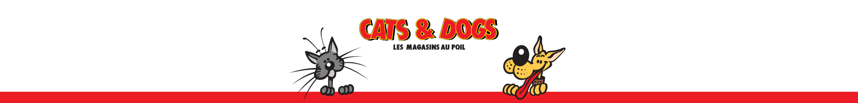 Cats And Dogs Sa Charmilles